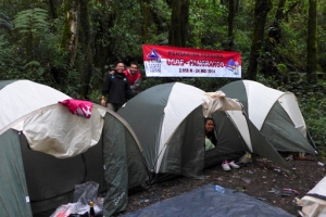 Blog Tenda